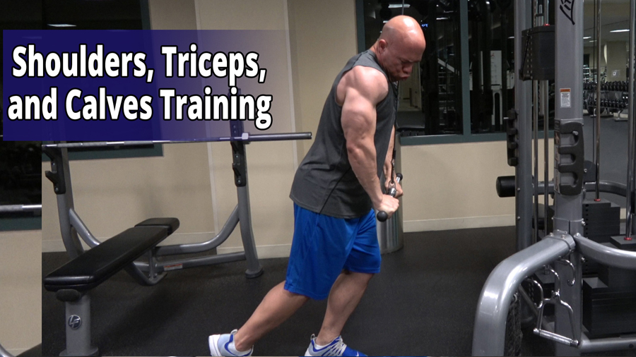 Shoulders, Triceps, and Calves Training
